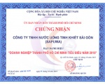 "SAPUWA RECEIVED THE AWARD ""TYPICAL HO CHI MINH CITY'S ENTERPRISES 2015"""