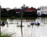 Typhoon Damrey wreaks havoc on central and south-central Vietnam