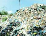 """Bình Định: Xử lý rác thải sinh hoạt và chất thải chăn nuôi """"gỡ khó cho các địa phương"""""""