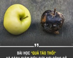 """Bài học """"quả táo thối"""" và cách giảm tiêu cực nơi công sở."""