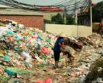 WHO và WMO phối hợp chống lại các rủi ro môi trường đối với sức khỏe