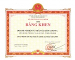 """SAPUWA receives the certificate """"Having the achievements in carrying out well tax policy 2008"""""""