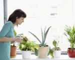 Nguyên nhân và giải pháp xử lý ô nhiễm không khí trong nhà