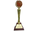 """SAPUWA is proudly honored Gold medal """"Topten Vietnam's brand in 2013's Integration"""""""