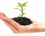 Nguyên nhân và giải pháp cho nạn ô nhiễm môi trường