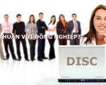 Mâu thuẫn với đồng nghiệp: Giải quyết bằng DISC