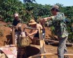 Tìm giải pháp giảm suy kiệt nguồn nước ở Tây Nguyên
