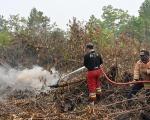 Indonesia nỗ lực đối phó với khói bụi độc hại