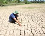 Khẩn cấp bảo vệ nguồn nước và hệ sinh thái sông Mê Công