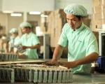 Việt Nam - WTO: 10 năm được, mất